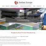 Fushan Europe web design